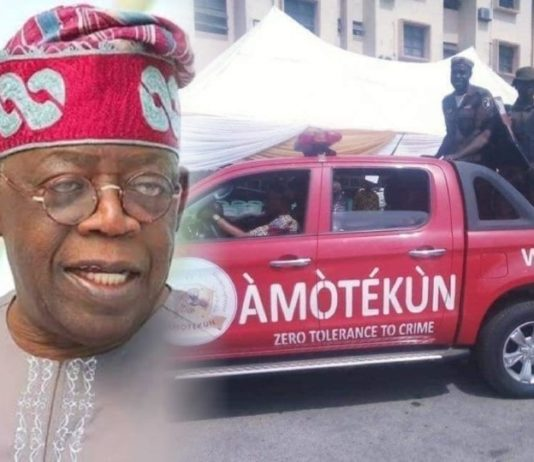 Amotekun Will Not Stand - Presidency Tells Tinubu