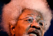 Wole Soyinka Writes Solidarity Message To Man Arrested For Blaspmesy