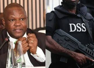 DSS invites ex-CBN deputy gov Mailafia for third time