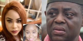 How Fani-Kayode Beat His Ex-wife, Precious Chikwendu, During Pregnancy, Assaulted Her For Six Years - Family