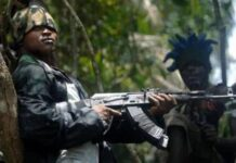 Former United States Soldier Kidnapped In Ekiti Regains Freedom