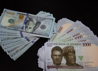 Naira Crashes to Record Low Against Dollar...See Latest Exchange Rate