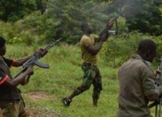 Many Feared Dead As Gunmen Attack Communities In Borno