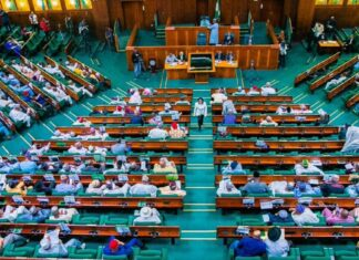 House Of Reps Suspend Federal Government's 774,000 Jobs Scheme