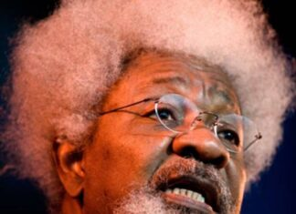OPINION: The Endless Martyrdom Of Youth By Wole Soyinka