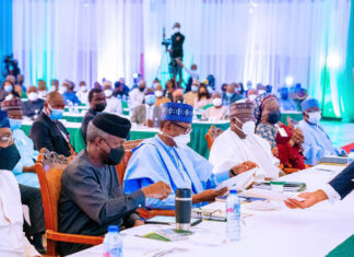 Federal Government Faces Tough Choices Over Likely Naira Devaluation