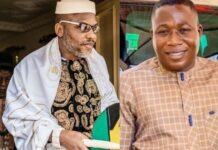 Afenifere, Ohaneze Ndigbo: Ours Sons Are Not Terrorists